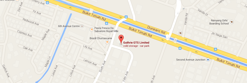true chiropractic bukit timah map